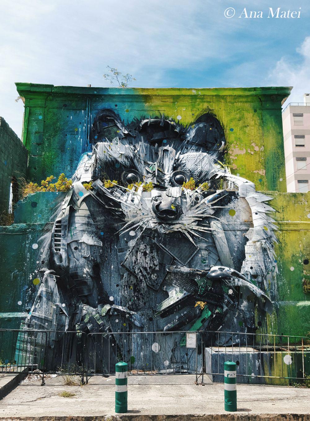 Raccoon-by-Bordalo-II---pic-by-Ana-Matei