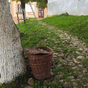 Autumn in Viscri, Transylvania