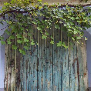 Autumn in Viscri and door