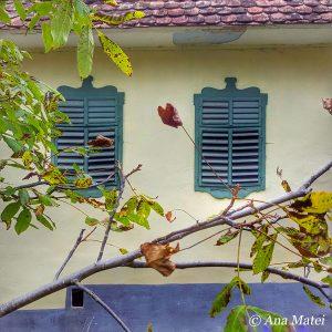Autumn in Viscri - foliage change