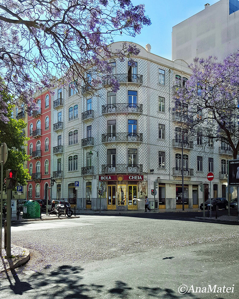 Lisbon Facade and Jacaranda - Perspective