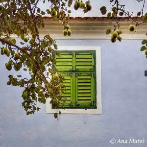 Pears by the Wood Panel Window in Viscri