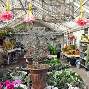 rosendals-tradgard-gardener-s-shop
