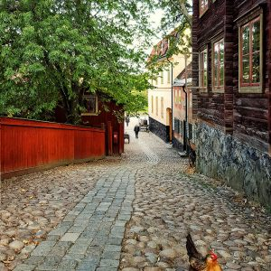 skansen-stockholm-on-the-road