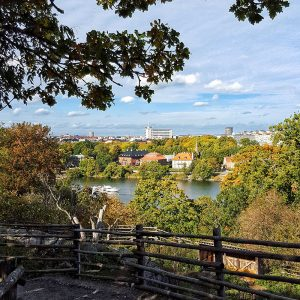 skansen-view-over-stockholm