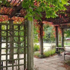 sofo-stockholm-inner-courtyard