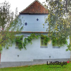 Viscri house