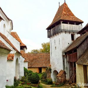 viscri-fortified-church-yard