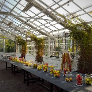 apple-tasting-in-rosendals-gardens-stockholm