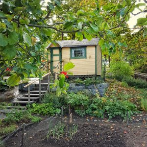 green-tiny-farmer-house-in-skansen