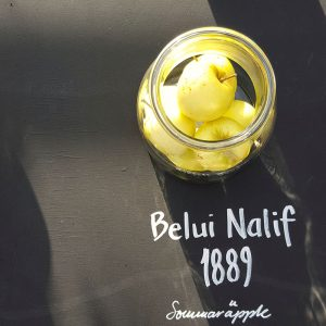 the-history-of-apple-varieties-in-stockholm