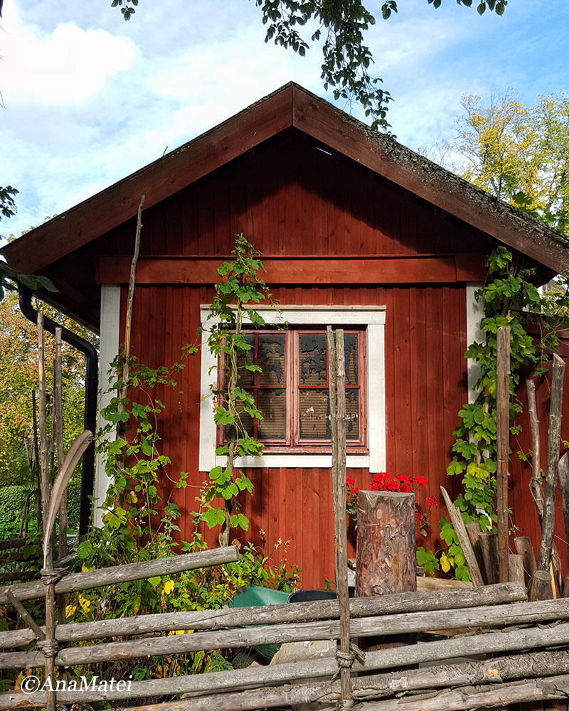 tiny-farmer-house-in-skansen