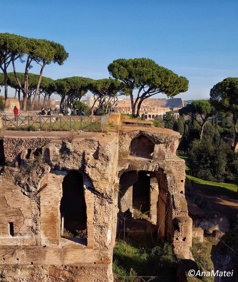 Palatine-Hill-Rome
