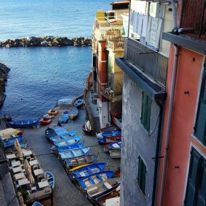 Riomaggiore-port---view-from-above