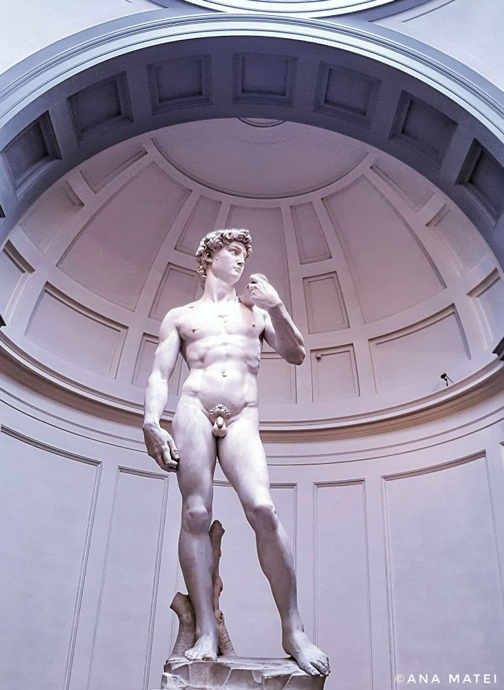 David-di-Michelangelo-at-Galleria-del-Accademia