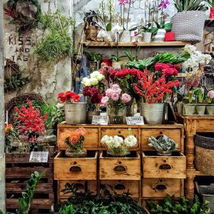 Flower-Shop-inside-La-Menagere-Florence