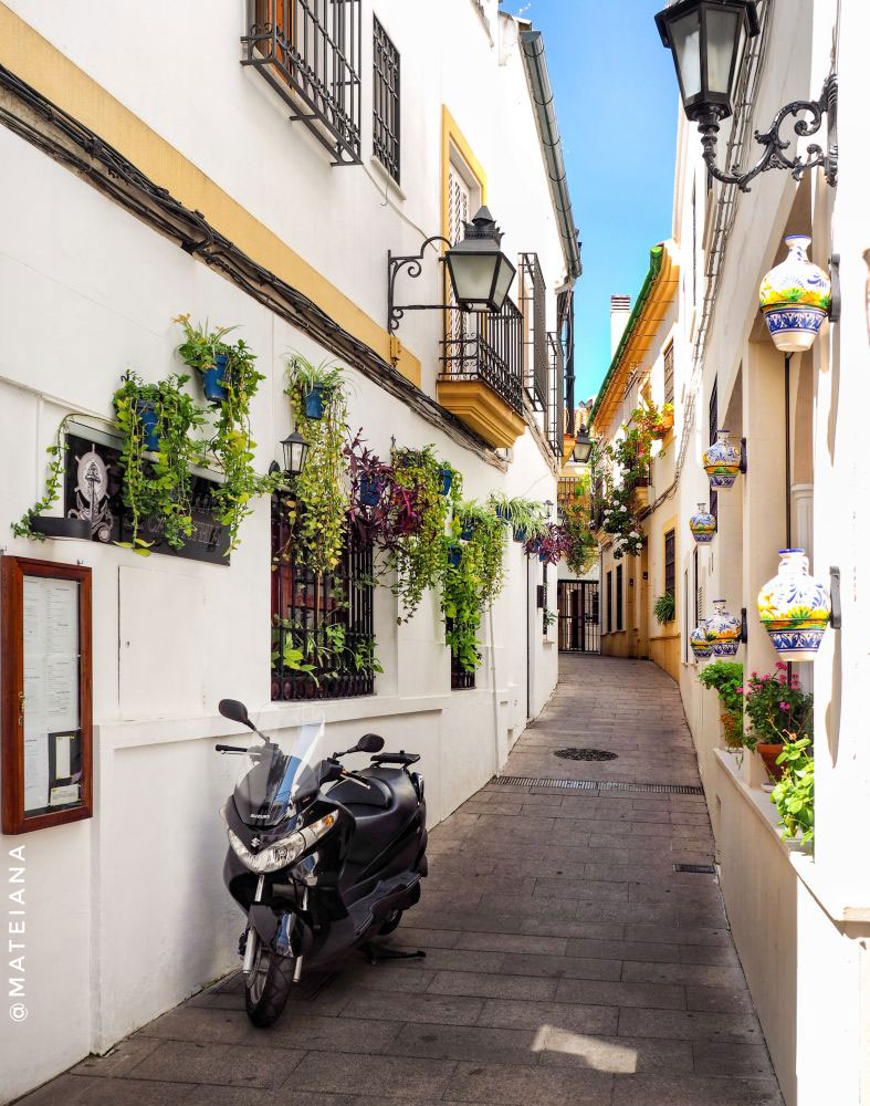 Narrow-streets-of-Cordoba,-Spain-covered-in-flowers