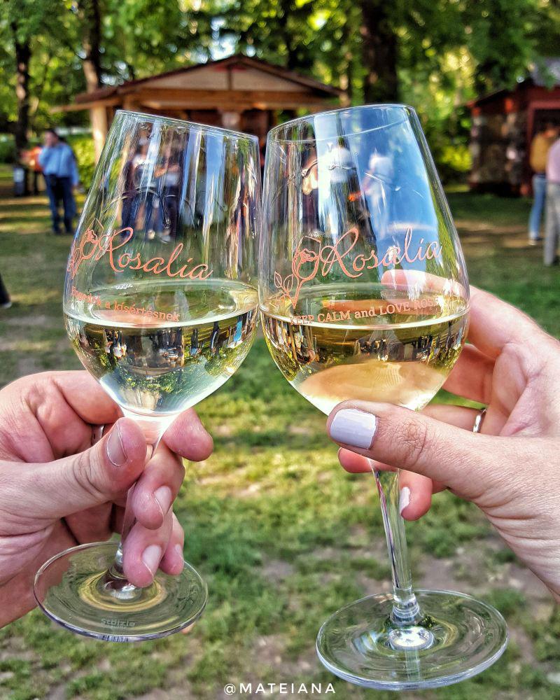 Rosalia--wine-festival-in-Budapest,-Hungary