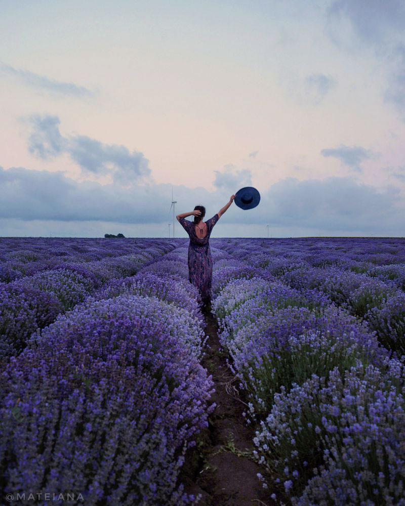 Ana---Lavender-Fields-in-Bulgaria