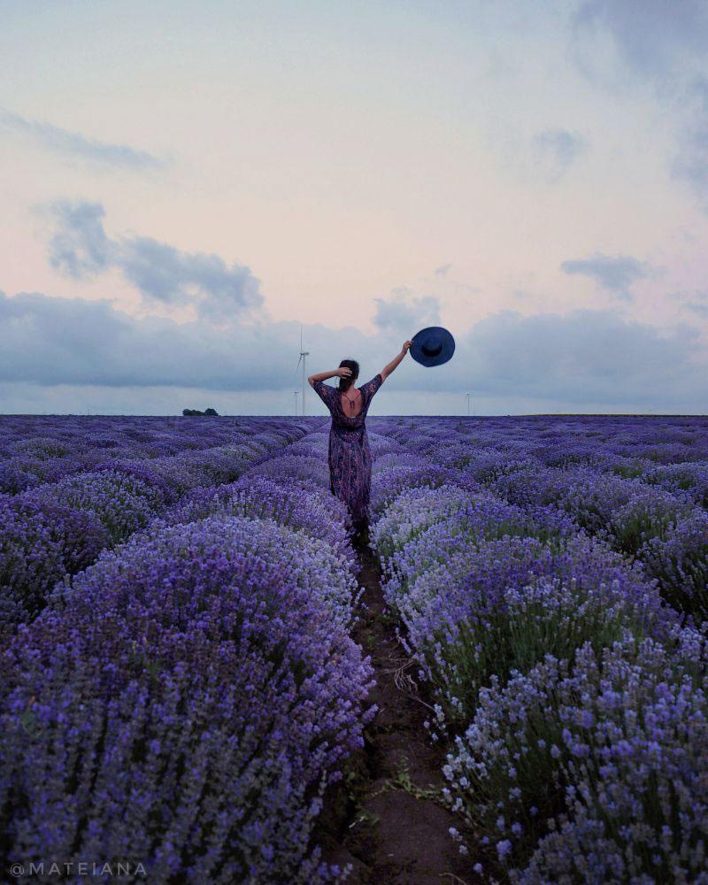 Ana---Lavender-Fields-in-Bulgaria