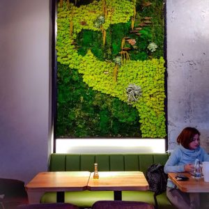 Meron-Coffee-Shop-in-Bucharest---live-wall---interior-styling