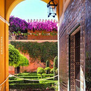 Casa-de-Pilatos---gardens