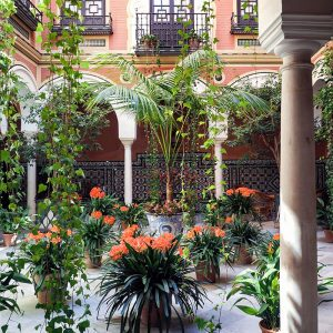 Secret-Patio-in-Seville,-Andalucia,-Spain