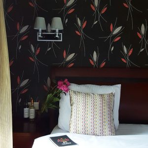 Aria-Hotel-Chisinau---room-details
