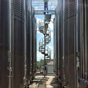 Asconi-Winery-Moldova