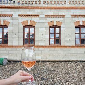 Castel-Mimi---Wine-Cellar-in-Moldova