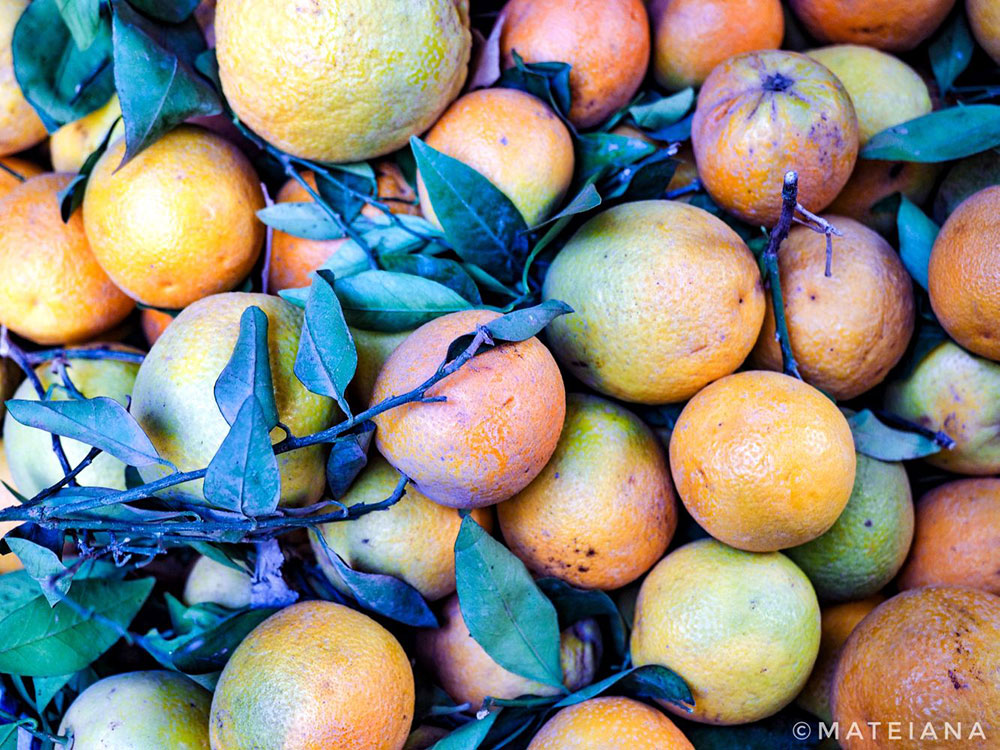 Oranges-in-a-Moroccan-Souk