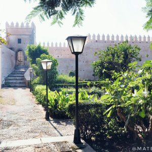 Andalusian-Gardens-in-Rabat,-Morocco---Morning