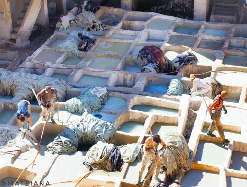 Fez-Travel-Guide---Fez-Tannery-Morocco