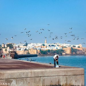 Seagulls-over-the-waterfront-in-Rabat,-Morocco