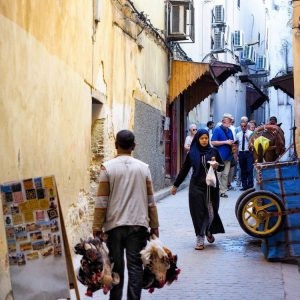 Streets-of-Fez-Medina