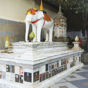 White-elephant-at-Wat-Phra-That-Doi-Suthep