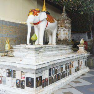 White-elephant-at-Wat-Phra-That-Doi-Suthep