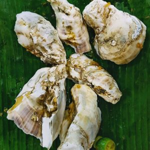 Oyster-shells-at-Satay-by-the-Bay,-Singapore