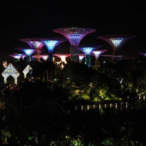 Garden-Rhapsody---Light-and-music-show---Gardens-by-the-Bay-Singapore