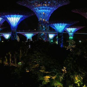 Gardens-by-the-Bay-Show-in-Singapore