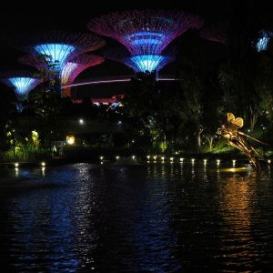Light-and-Music-show-at-SuperTree-Grove---Gardens-by-the-Bay,-Singapore