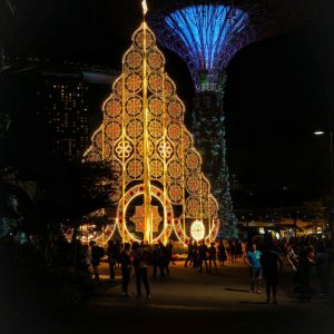 SuperTree-Grove---Gardens-by-the-Bay-Singapore