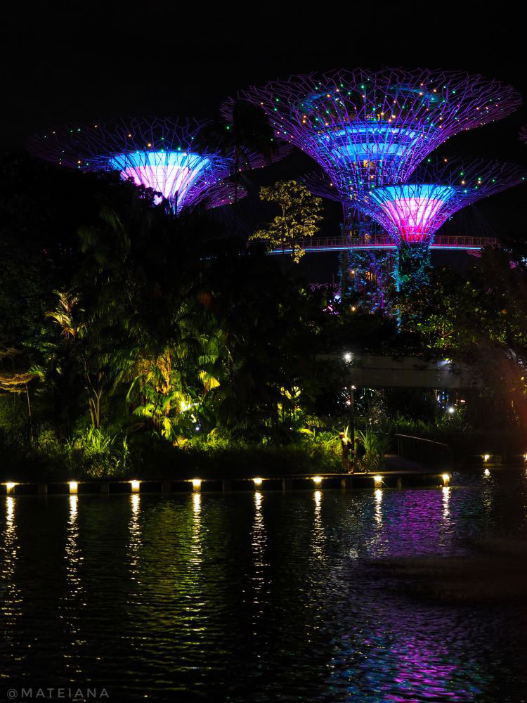 SuperTree-Light-and-Sound-Show-at-Gardens-by-the-Bay