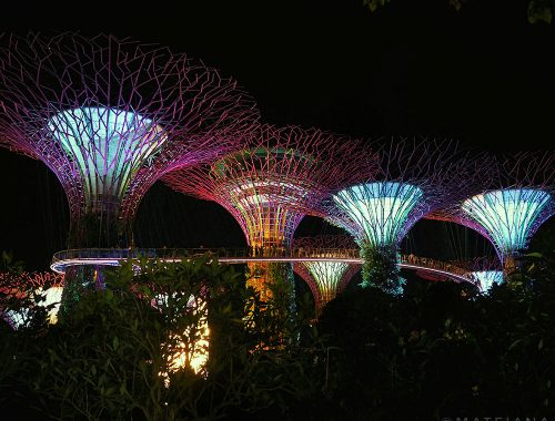 Singapore-Light-Show---Gardens-by-the-Bay-and-Marina-Bay-Sands---fi