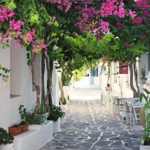 Bougainvillea street in Naousa, Paros